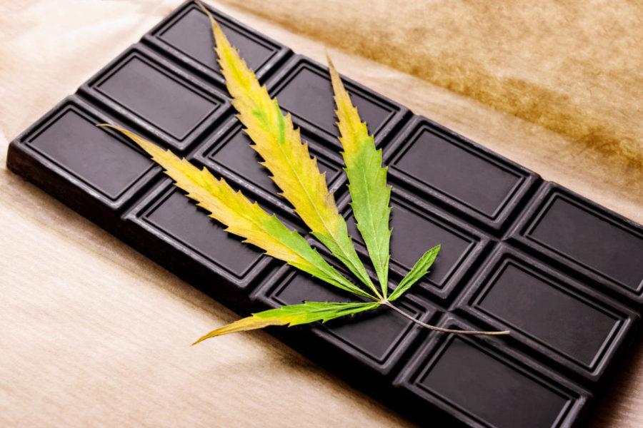 czekolady z konopi